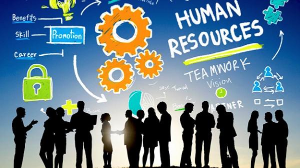 Pentingnya Menggunakan Software Payroll Terbaik untuk Meningkatkan Produktivitas Perusahaan